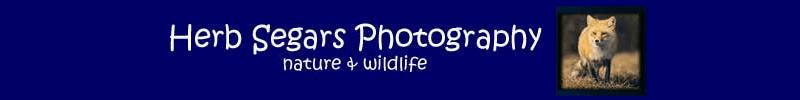 Herb Segars Photography